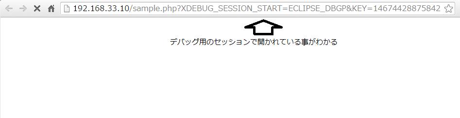 xdebug_browser